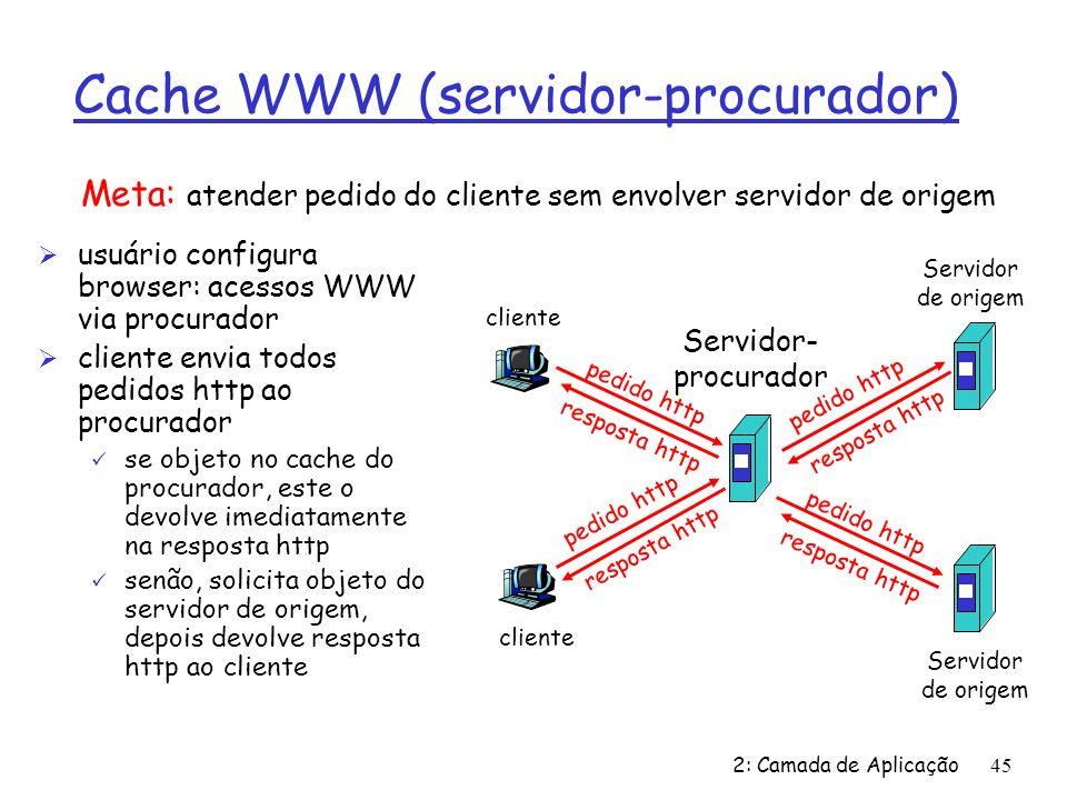 Cache WWW (servidor-procurador)
