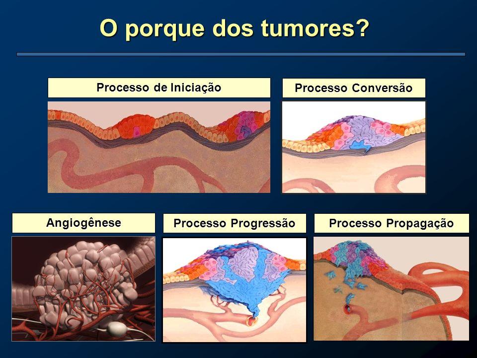 O porque dos tumores Processo de Iniciação Processo Conversão