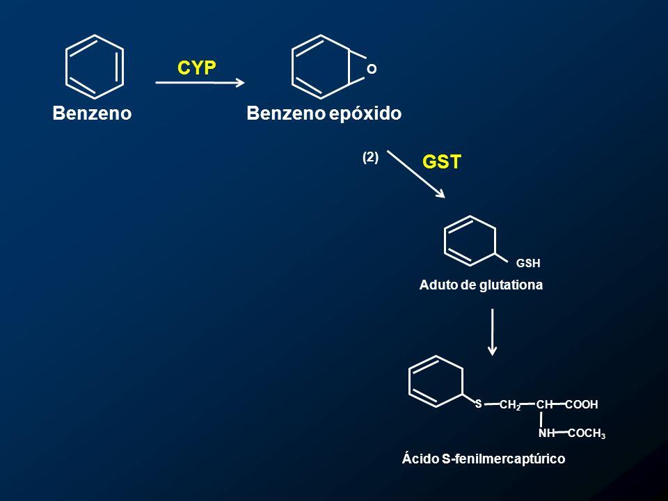 Ácido S-fenilmercaptúrico