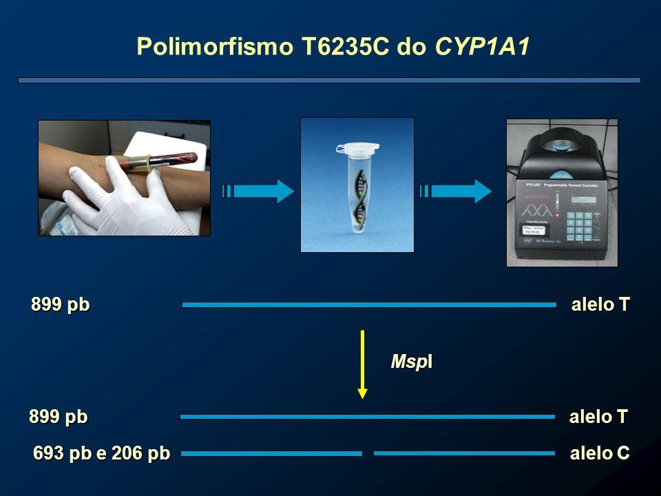 Polimorfismo T6235C do CYP1A1