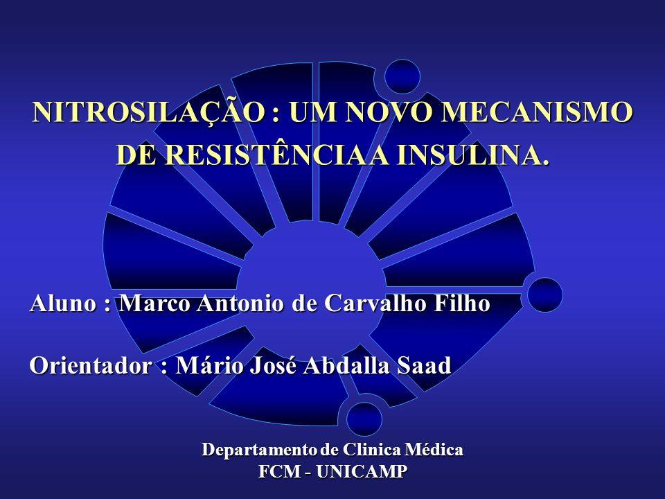 NITROSILAÇÃO : UM NOVO MECANISMO DE RESISTÊNCIA A INSULINA.