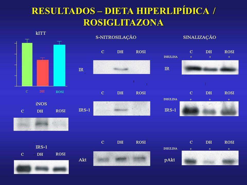 RESULTADOS – DIETA HIPERLIPÍDICA / ROSIGLITAZONA