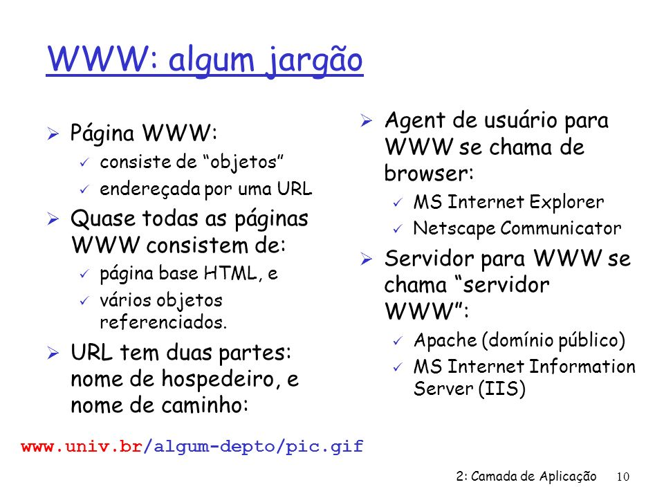 WWW: algum jargão Agent de usuário para WWW se chama de browser: