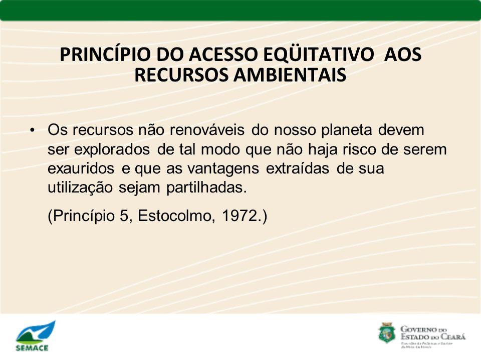 PRINCÍPIO DO ACESSO EQÜITATIVO AOS RECURSOS AMBIENTAIS