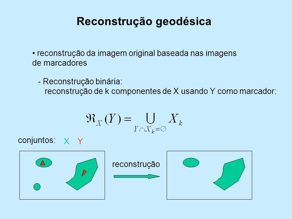 Reconstrução geodésica