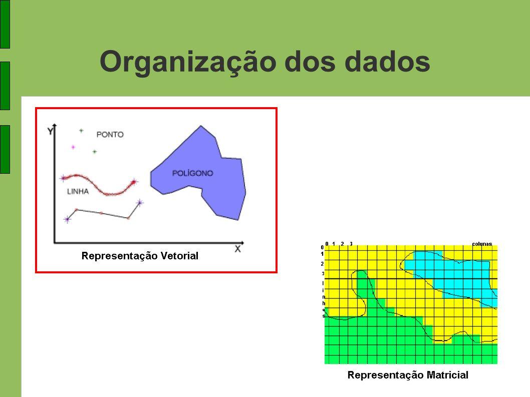 Organização dos dados