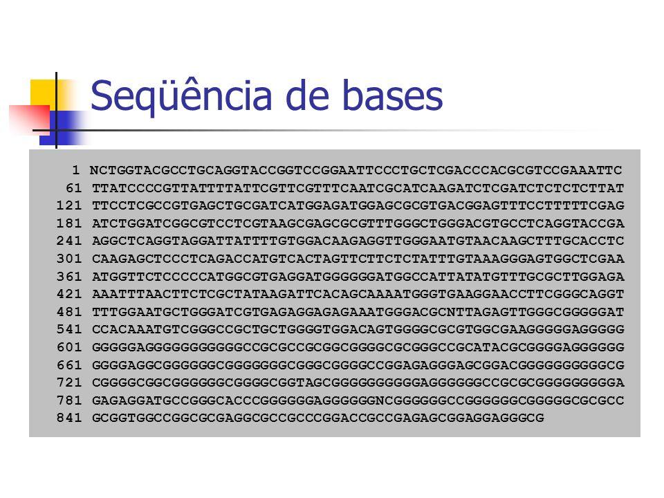 Seqüência de bases1 NCTGGTACGCCTGCAGGTACCGGTCCGGAATTCCCTGCTCGACCCACGCGTCCGAAATTC. 61 TTATCCCCGTTATTTTATTCGTTCGTTTCAATCGCATCAAGATCTCGATCTCTCTCTTAT.