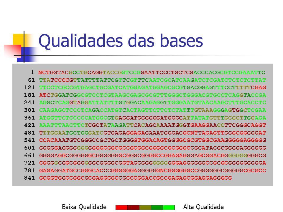 Qualidades das bases 1 NCTGGTACGCCTGCAGGTACCGGTCCGGAATTCCCTGCTCGACCCACGCGTCCGAAATTC. 61 TTATCCCCGTTATTTTATTCGTTCGTTTCAATCGCATCAAGATCTCGATCTCTCTCTTAT.