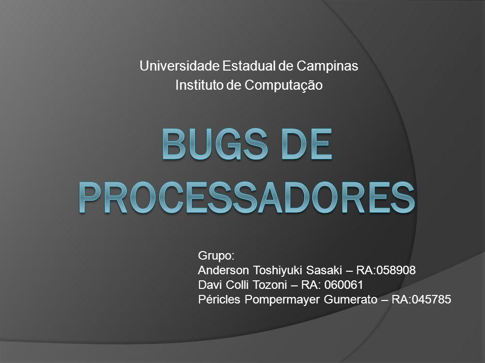 Universidade Estadual de Campinas Instituto de Computação