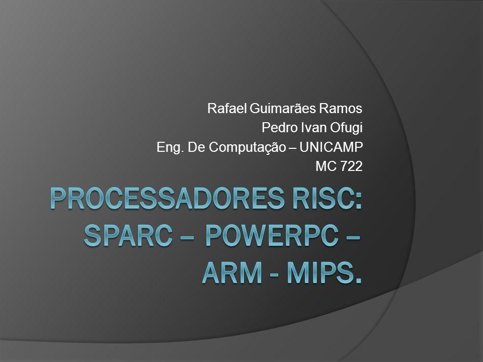 Processadores risc: sparc – powerpc – arm - mips.