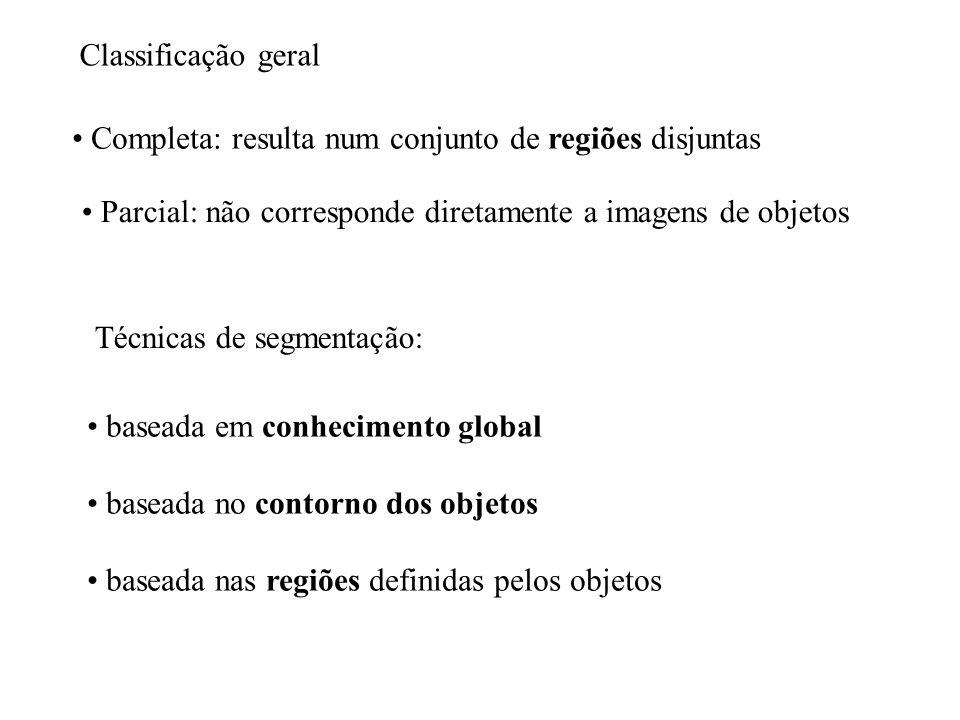 Classificação geral Completa: resulta num conjunto de regiões disjuntas. Parcial: não corresponde diretamente a imagens de objetos.