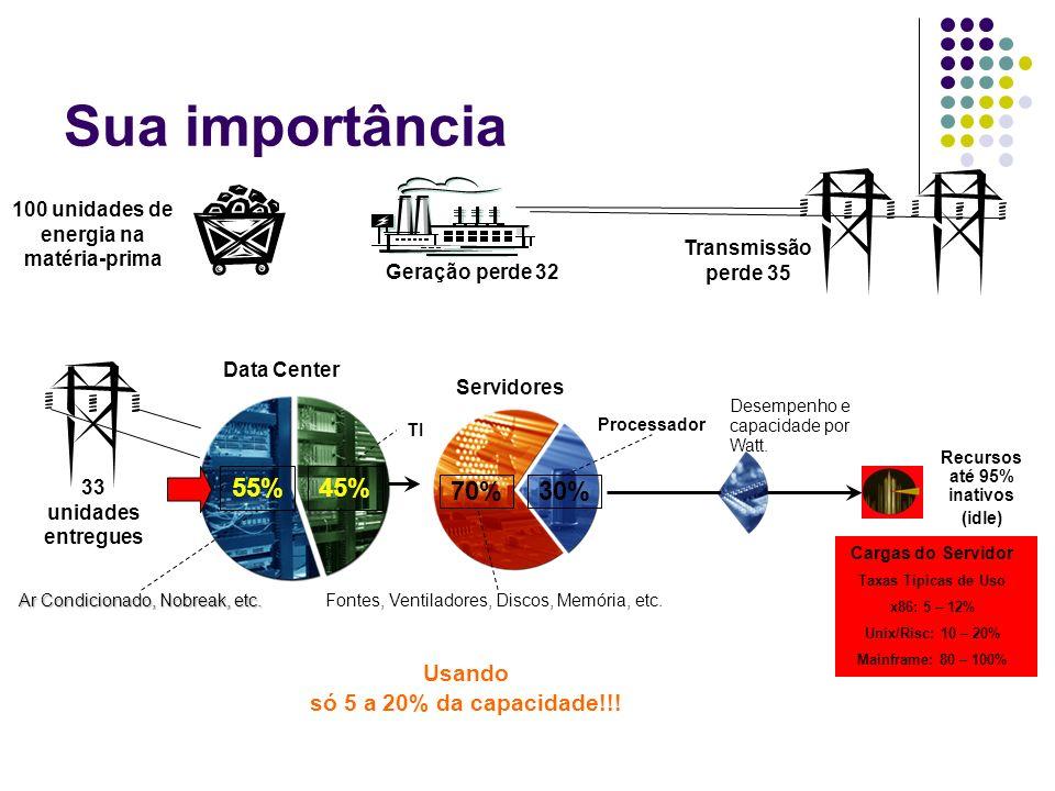 Sua importância 55% 45% 70% 30% Usando só 5 a 20% da capacidade!!!