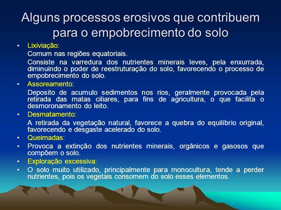 Alguns processos erosivos que contribuem para o empobrecimento do solo