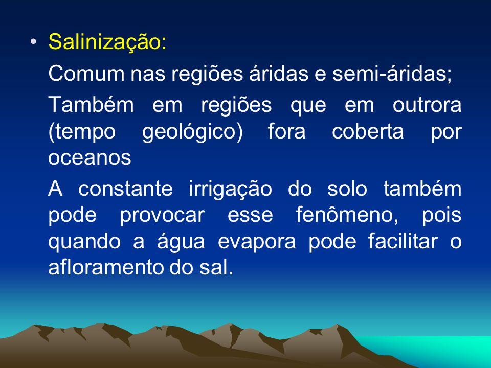Salinização: Comum nas regiões áridas e semi-áridas; Também em regiões que em outrora (tempo geológico) fora coberta por oceanos.