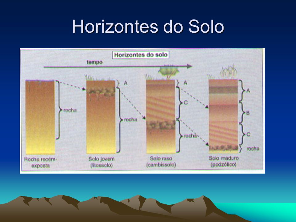 Horizontes do Solo