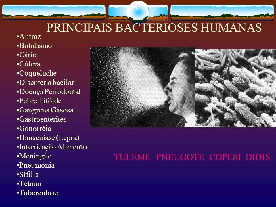 PRINCIPAIS BACTERIOSES HUMANAS