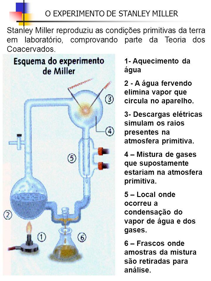 O EXPERIMENTO DE STANLEY MILLER