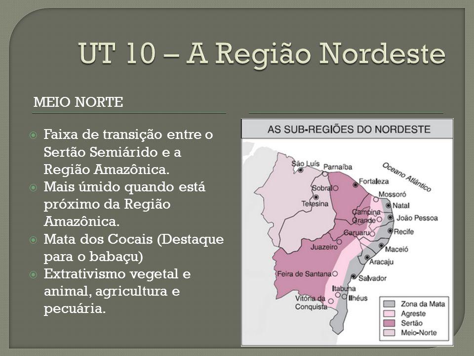 UT 10 – A Região Nordeste Meio NOrte