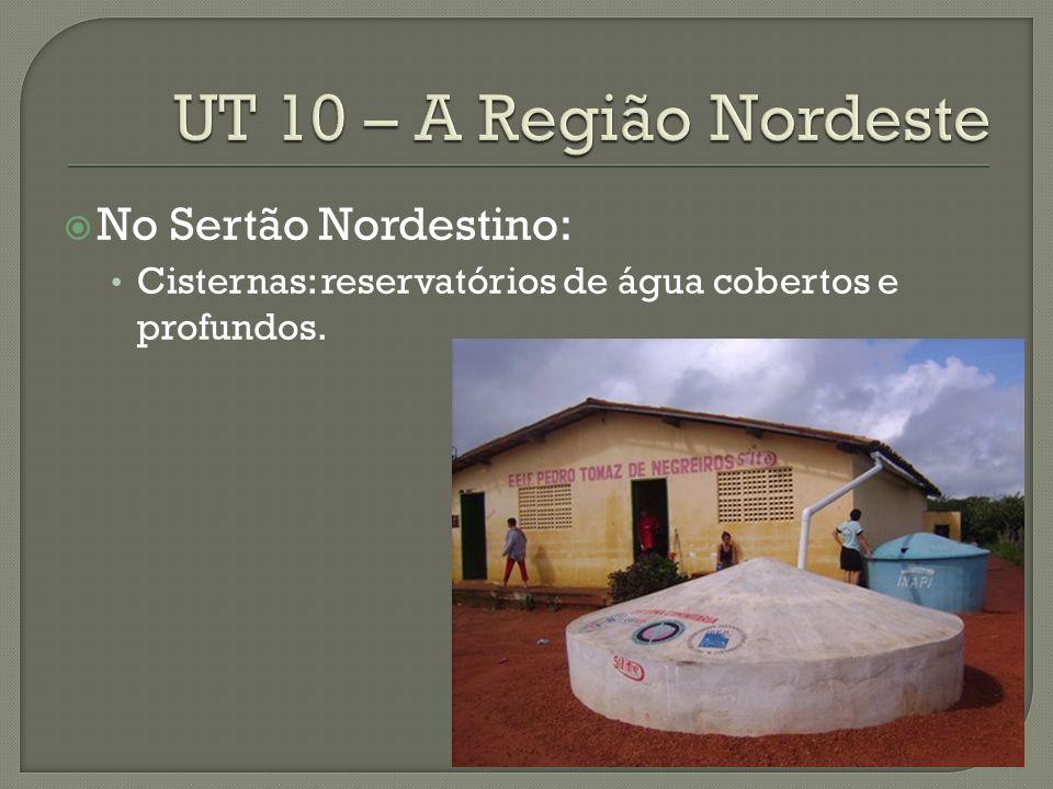 UT 10 – A Região Nordeste No Sertão Nordestino: