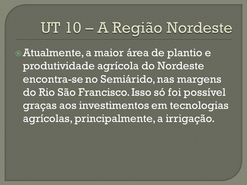 UT 10 – A Região Nordeste