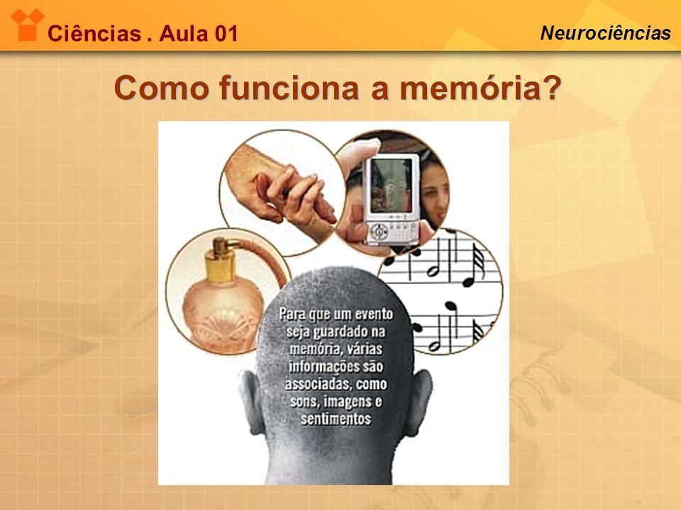 Como funciona a memória