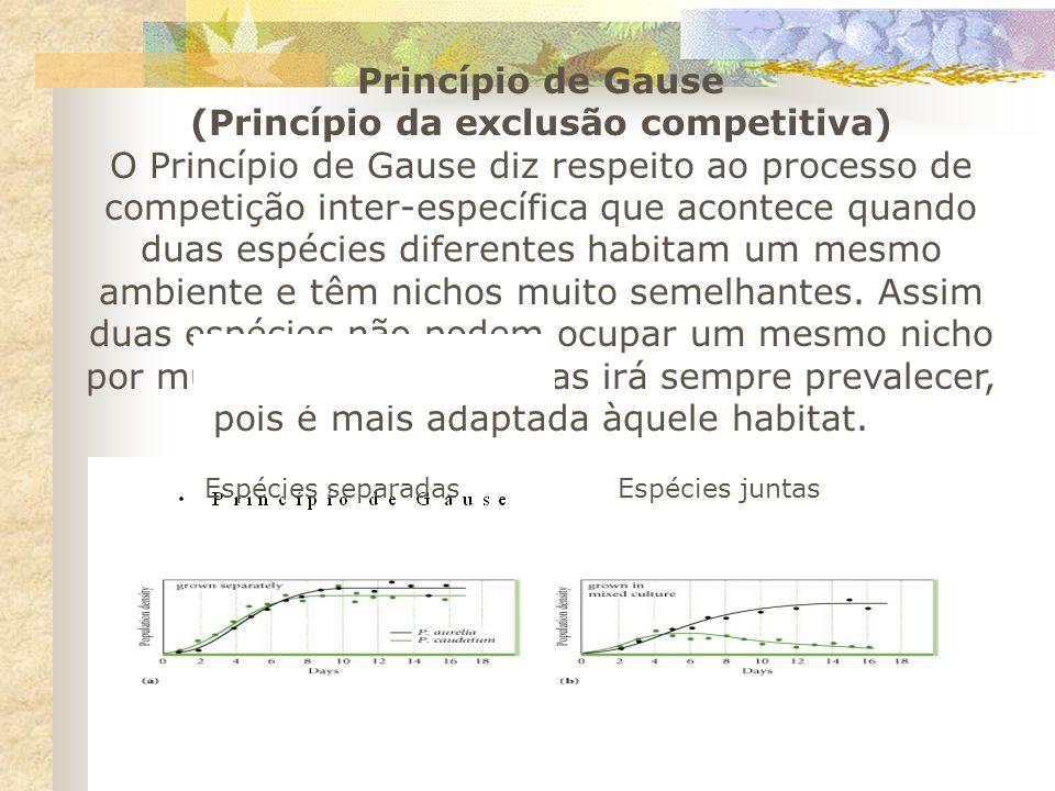 Princípio de Gause