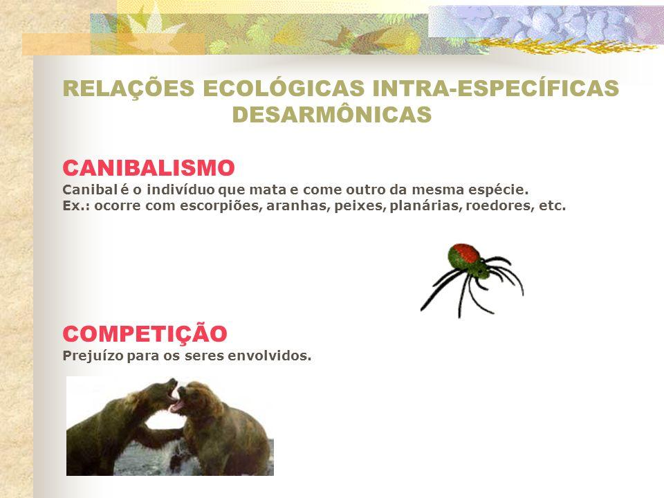 RELAÇÕES ECOLÓGICAS INTRA-ESPECÍFICAS DESARMÔNICAS CANIBALISMO