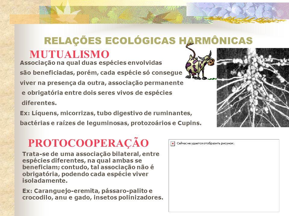 RELAÇÕES ECOLÓGICAS HARMÔNICAS