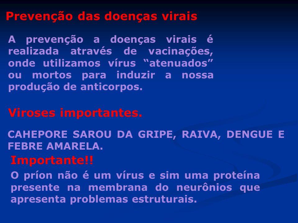 Prevenção das doenças virais