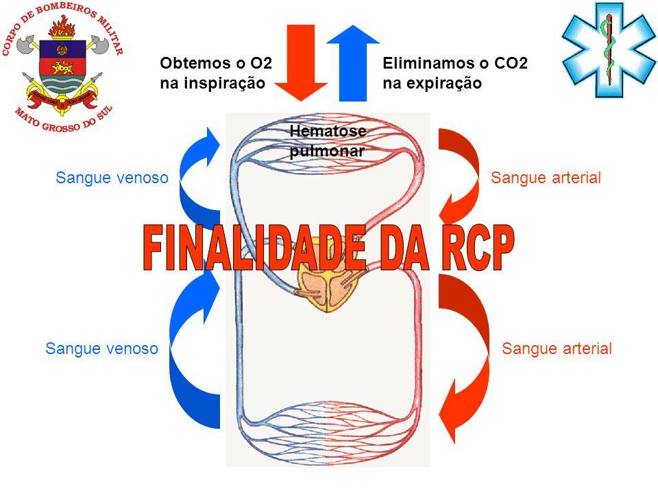 FINALIDADE DA RCP Obtemos o O2 na inspiração