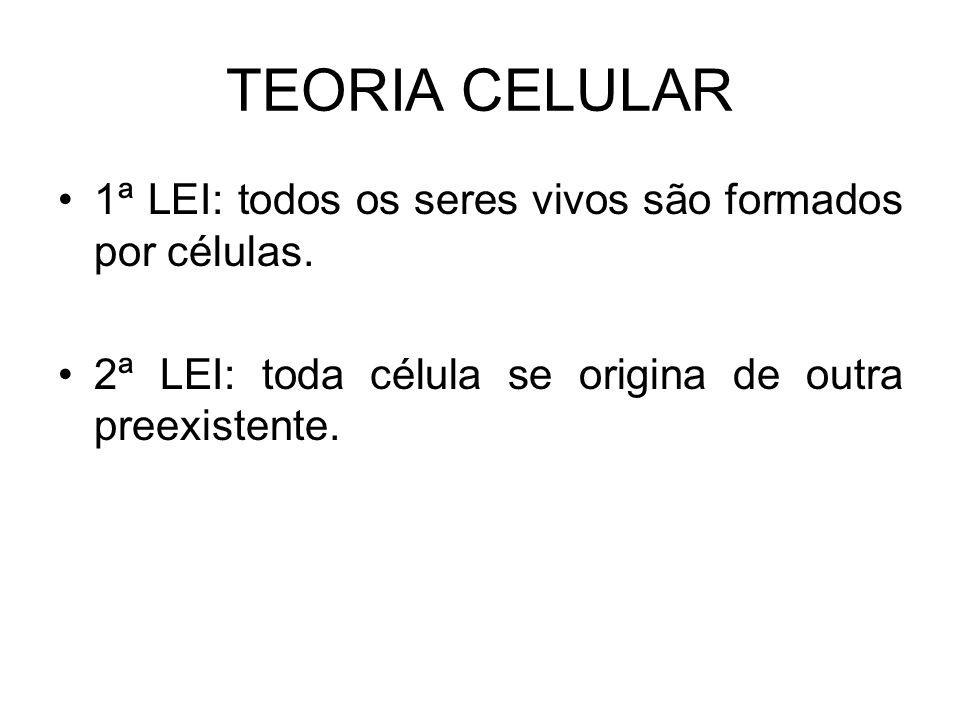 TEORIA CELULAR 1ª LEI: todos os seres vivos são formados por células.