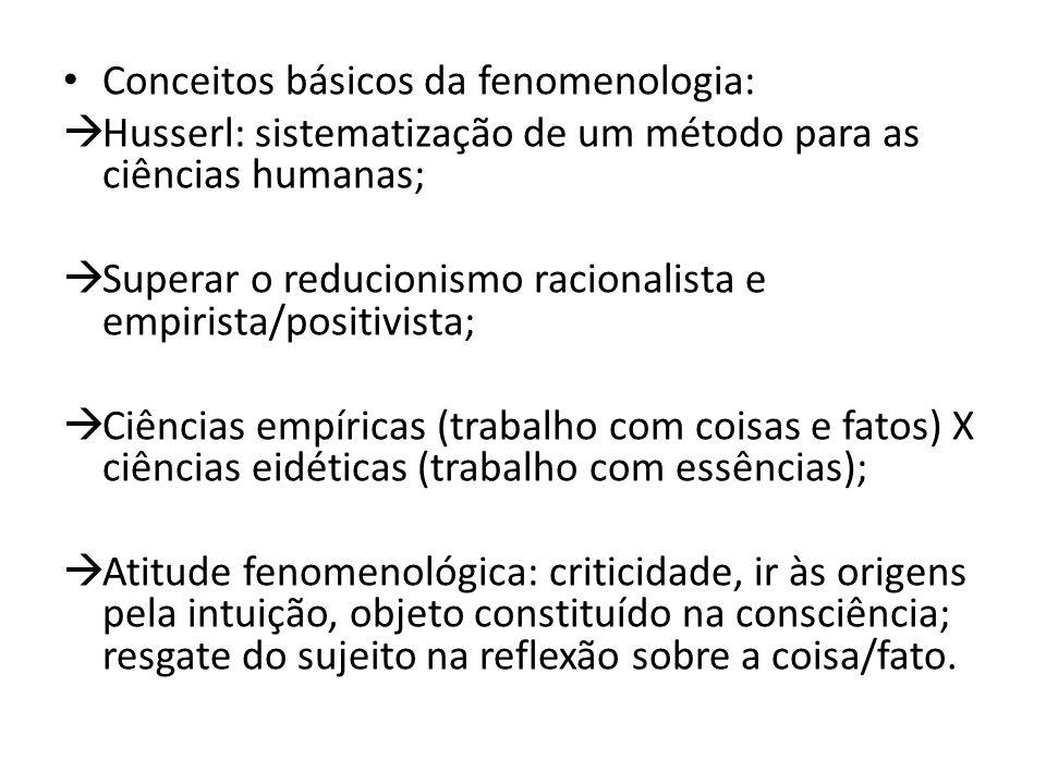 Conceitos básicos da fenomenologia: