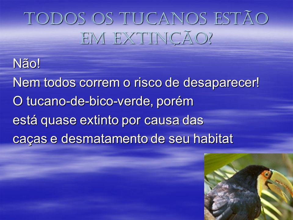 Todos os tucanos estão em extinção