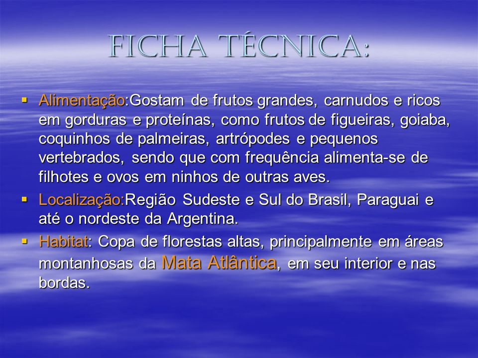 Ficha técnica: