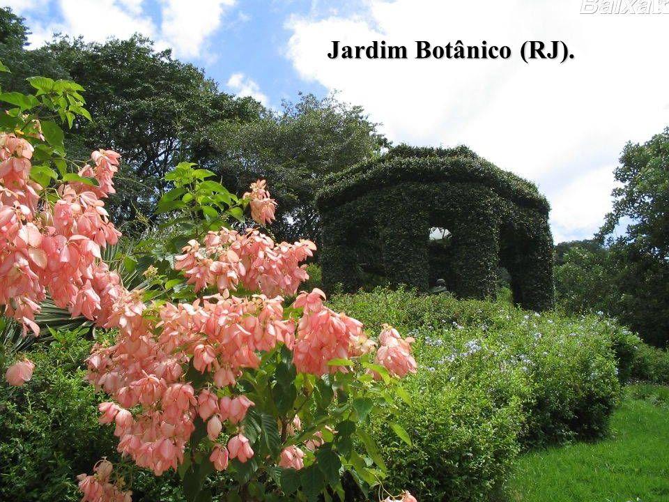 Jardim Botânico (RJ).