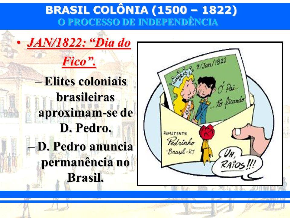 Elites coloniais brasileiras aproximam-se de D. Pedro.
