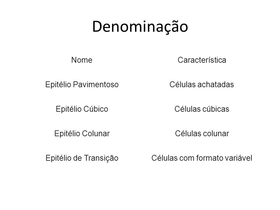 Células com formato variável