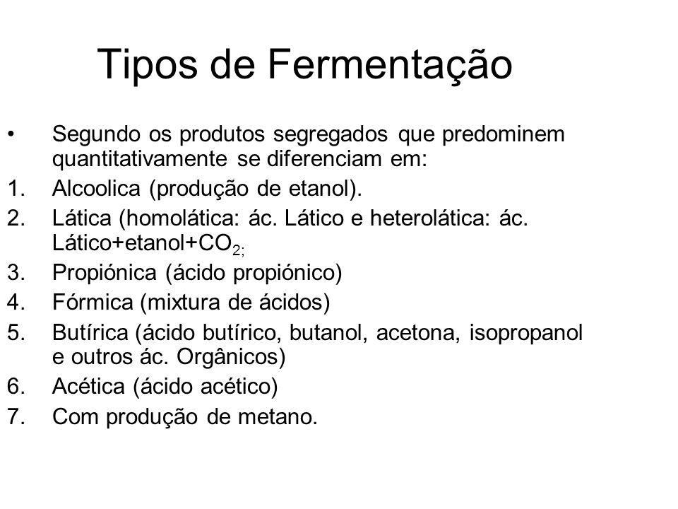 Tipos de Fermentação Segundo os produtos segregados que predominem quantitativamente se diferenciam em: