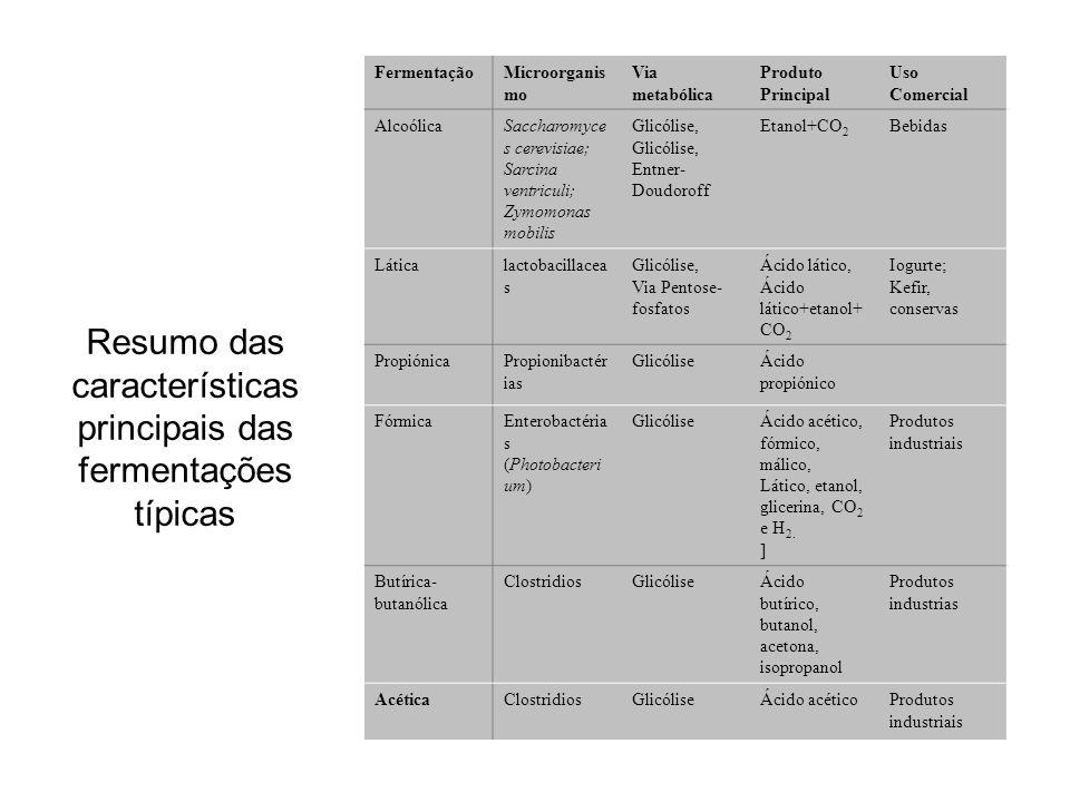 Resumo das características principais das fermentações típicas