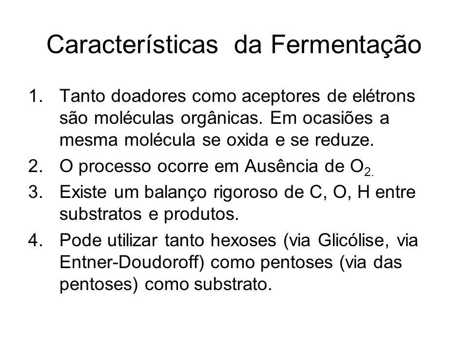 Características da Fermentação