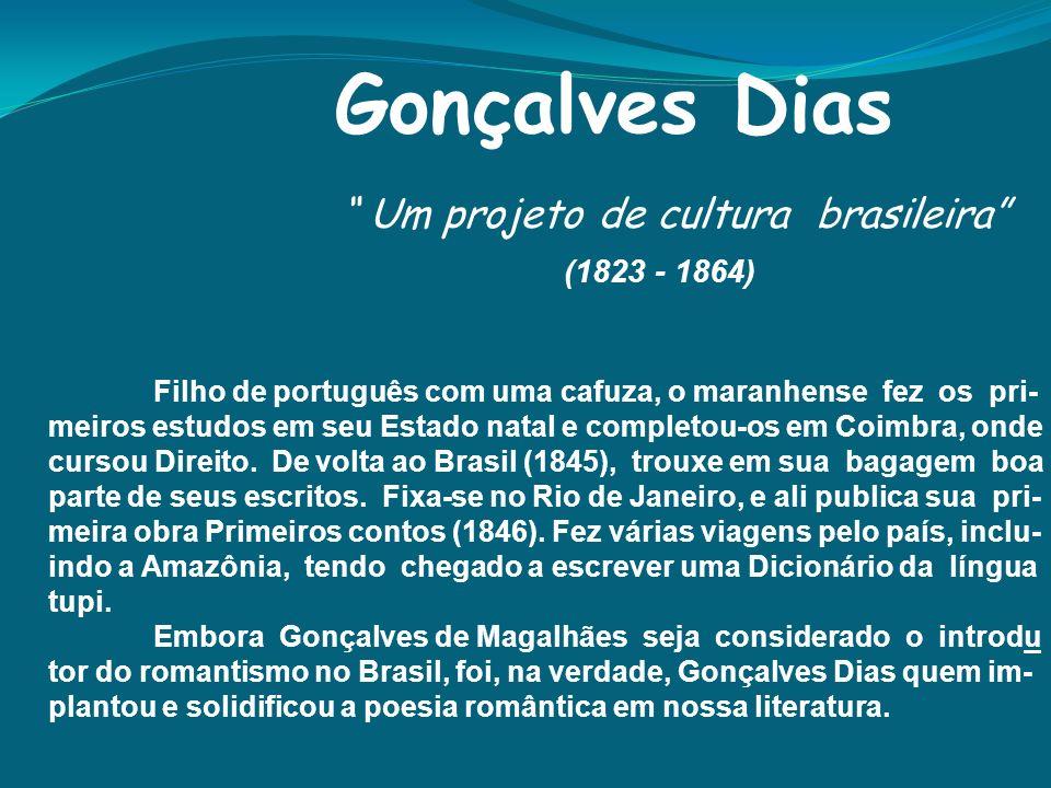 Um projeto de cultura brasileira