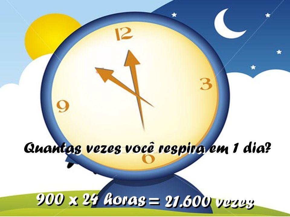 Quantas vezes você respira em 1 dia