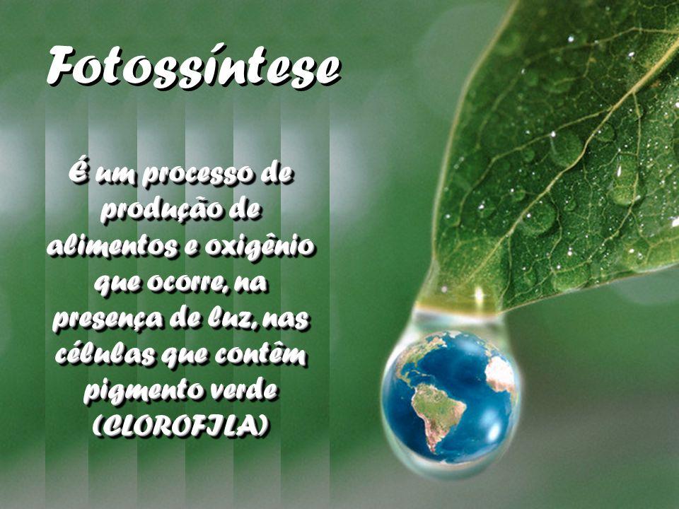 Fotossíntese É um processo de produção de alimentos e oxigênio que ocorre, na presença de luz, nas células que contêm pigmento verde (CLOROFILA)