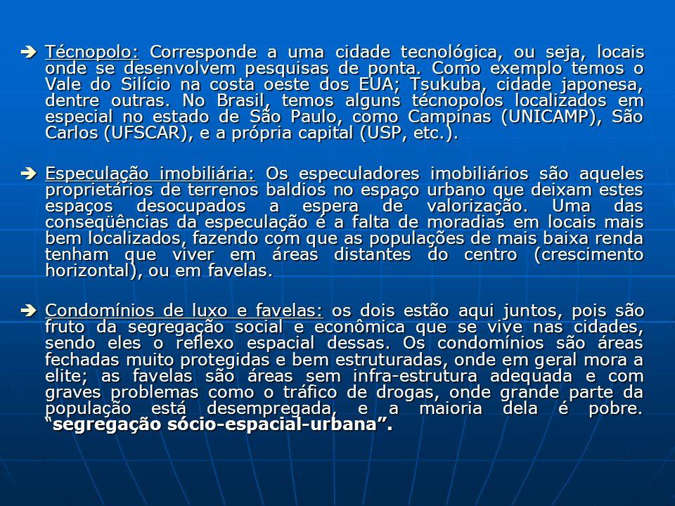 Técnopolo: Corresponde a uma cidade tecnológica, ou seja, locais onde se desenvolvem pesquisas de ponta. Como exemplo temos o Vale do Silício na costa oeste dos EUA; Tsukuba, cidade japonesa, dentre outras. No Brasil, temos alguns técnopolos localizados em especial no estado de São Paulo, como Campinas (UNICAMP), São Carlos (UFSCAR), e a própria capital (USP, etc.).