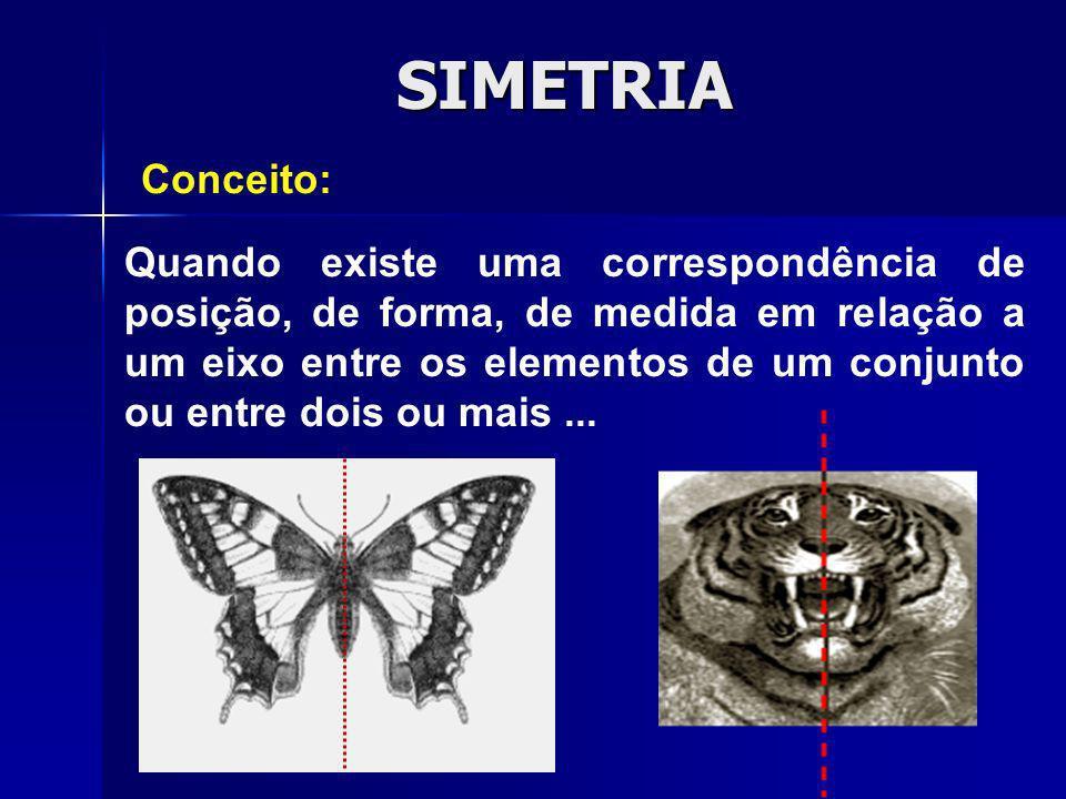 SIMETRIA Conceito: