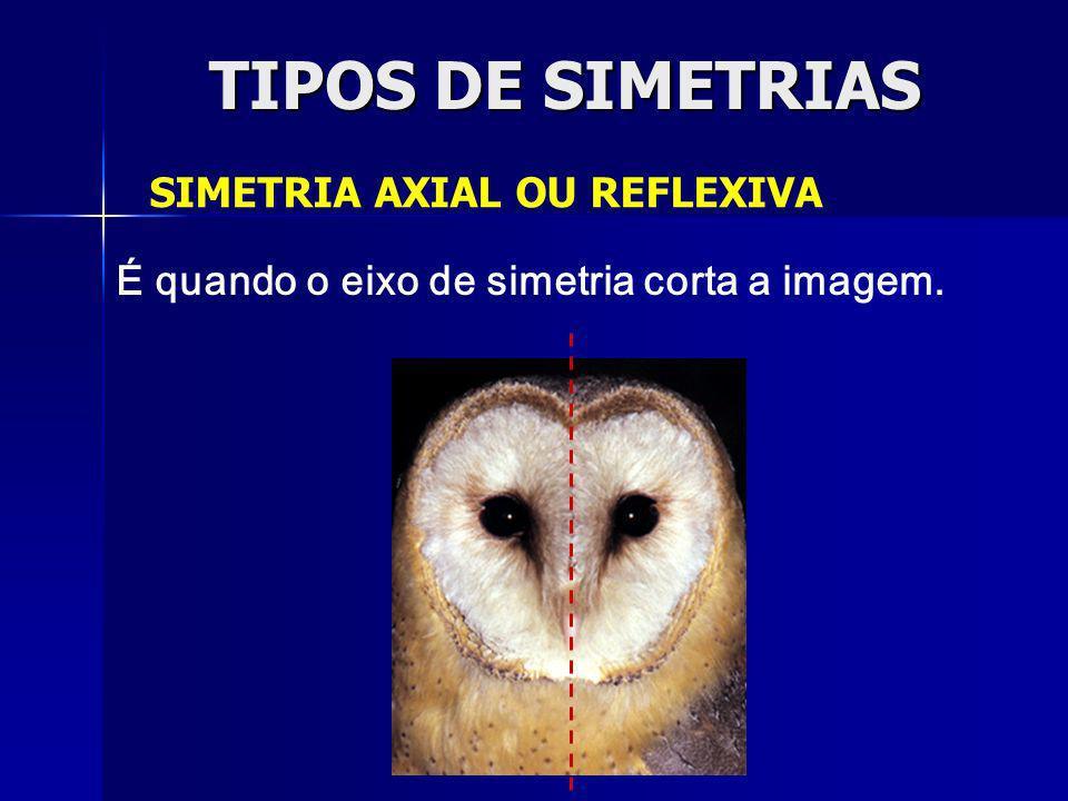 TIPOS DE SIMETRIAS SIMETRIA AXIAL OU REFLEXIVA