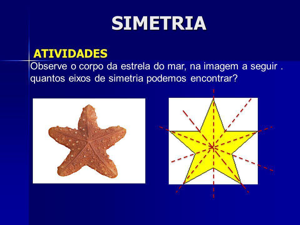 SIMETRIA ATIVIDADES. Observe o corpo da estrela do mar, na imagem a seguir .
