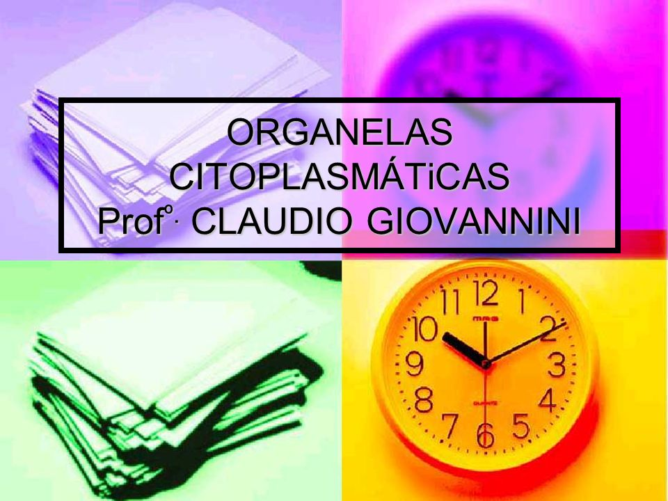 ORGANELAS CITOPLASMÁTiCAS Profº. CLAUDIO GIOVANNINI