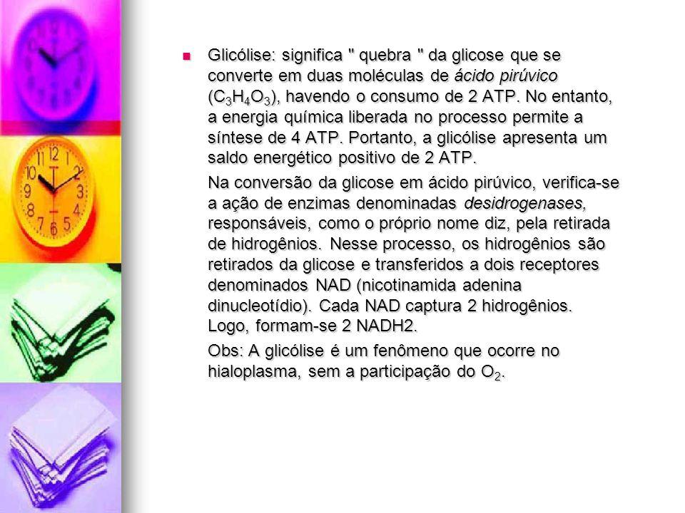 Glicólise: significa quebra da glicose que se converte em duas moléculas de ácido pirúvico (C3H4O3), havendo o consumo de 2 ATP. No entanto, a energia química liberada no processo permite a síntese de 4 ATP. Portanto, a glicólise apresenta um saldo energético positivo de 2 ATP.