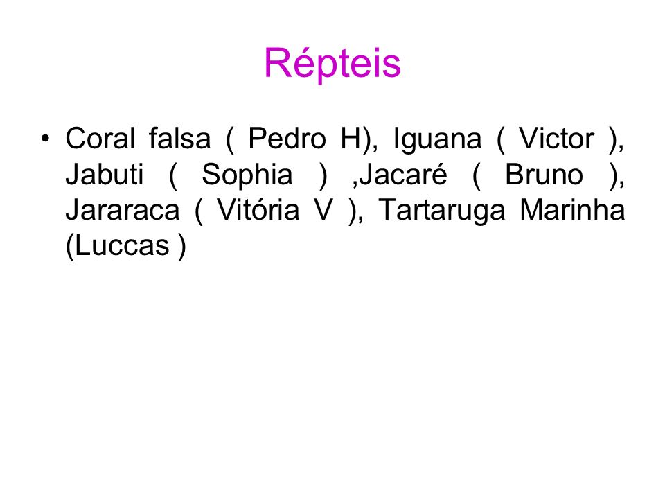 Répteis Coral falsa ( Pedro H), Iguana ( Victor ), Jabuti ( Sophia ) ,Jacaré ( Bruno ), Jararaca ( Vitória V ), Tartaruga Marinha (Luccas )